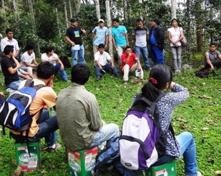 CENFROCAFE Bourbon, Catimor, Caturra, Mundo Novo, Pache, and Typica San Ignacio, Cajamarca, Peru