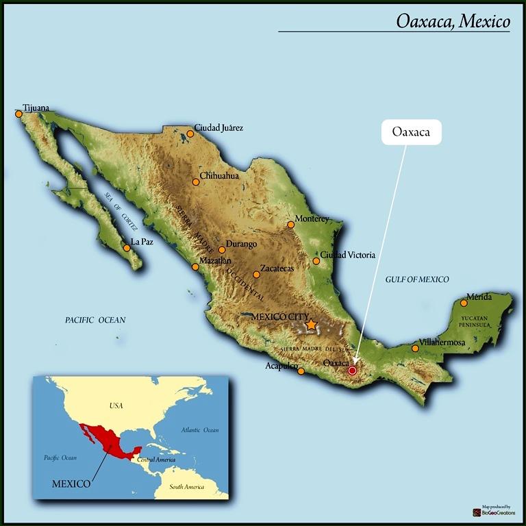 Mexico Oaxaca Pluma San Agustin Loxicha Grainpro (saloxicha ... on guadalajara mexico map, puerto rico mexico map, salamanca mexico map, santa ana mexico map, cofradia mexico map, la union mexico map, las palmas mexico map, el golfo mexico map, santa rosa mexico map, socorro mexico map, sahagun mexico map, rosario mexico map, santa rita mexico map, santiago mexico map, zaragoza mexico map, santa lucia mexico map, carmen mexico map, cordoba mexico map, victoria mexico map, cortes mexico map,