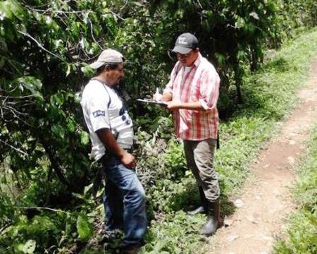 Bourbon, Mundo Novo, and Typica Chiapas, Mexico Productores de Café De Conservación El Triunfo