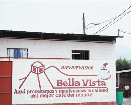 La Folie Farm Bourbon 300 Antigua Guatemala, Sacatepéquez, Guatemala