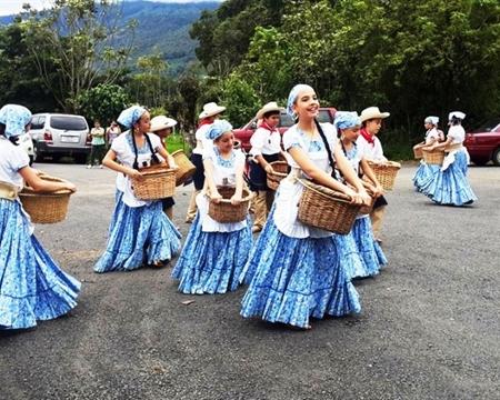 Costa Rica CoopeDota Dota Tarrazu Santa Maria EP GrainPro (santamaria)