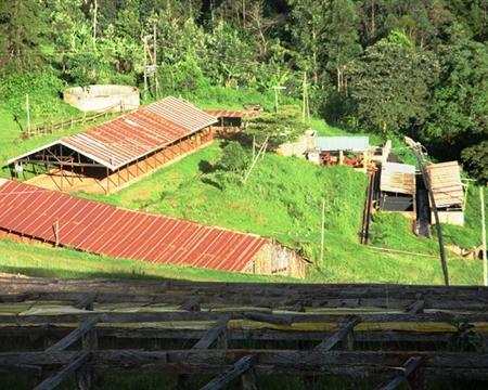 Kenya Ruiru