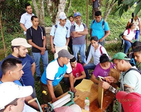 PRODECOOP Catuai, Caturra, Bourbon, and Typica Estelí, Madriz, and Nueva Segovia, Nicaragua