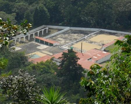 Bourbon, Typica, and Gesha Patzún, Chimaltenango, Guatemala FINCA SANTA RITA Dariush Echeverria Zachrisson
