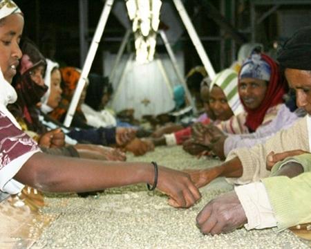 Ethiopia Gedeo Zone Konga mill