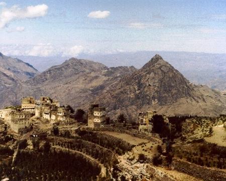 Ali Hiba Muslot & Sons Yemen Mocca Sanani