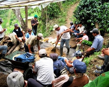 Norandino Piura, Caturra, Bourbon, Catuai, Pache, Villa Sarchi, and Catimor Amazonas, Cajamarca, and San Martin regions, Peru