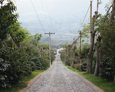Caturra, Bourbon Sacatepéquez Guatemala Antigua Bella Carmona