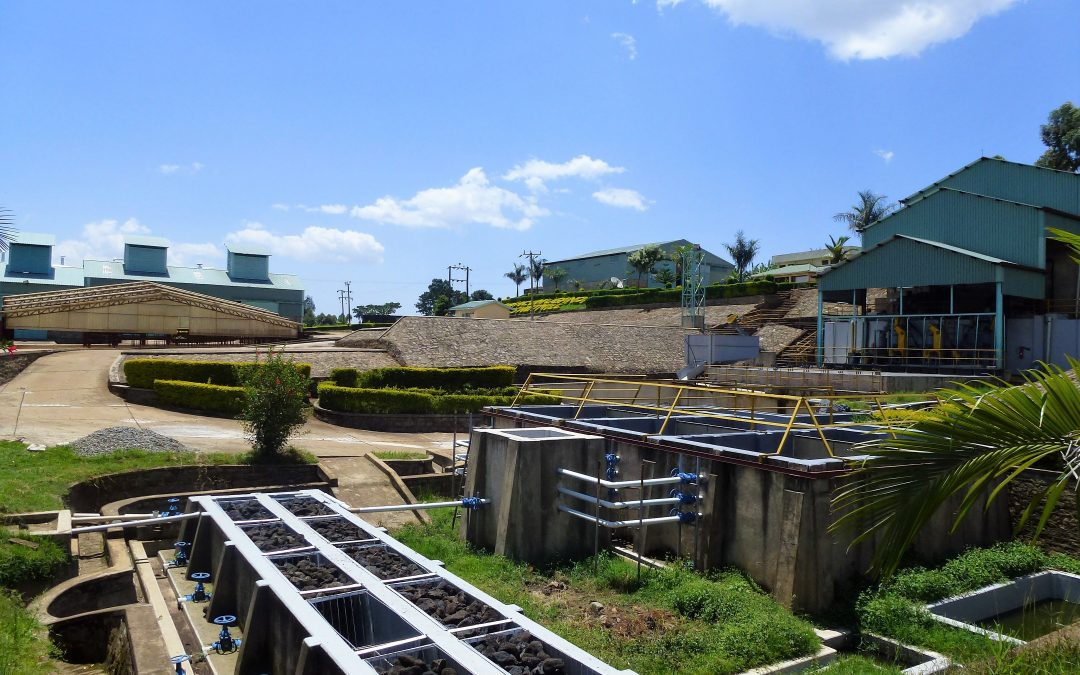 Crown Analysis: CJ1124 – 乌干达Kapkwai Sipi Falls处理厂日晒处理