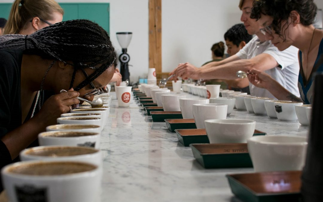 Intro to Cupping: Defects, the Flavor Wheel, and the SCA Form