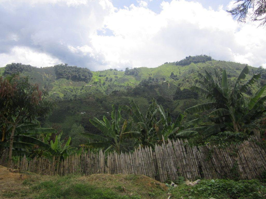 buesaco narino colombia