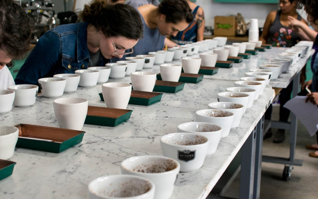 Royal Cupping at Bay Area CoRoasters – FREE