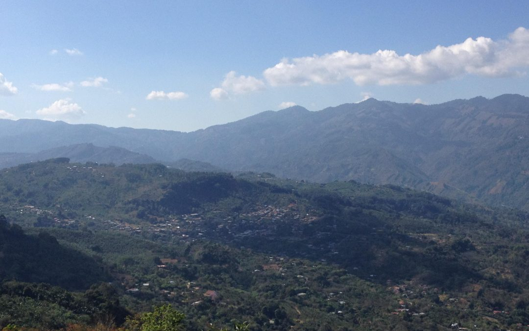 The Coffee Buyers' Cupping Table: Costa Rica Spotlight