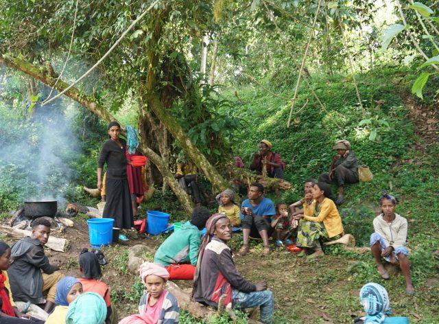 Coffee break for pickers in Gera, Jimma