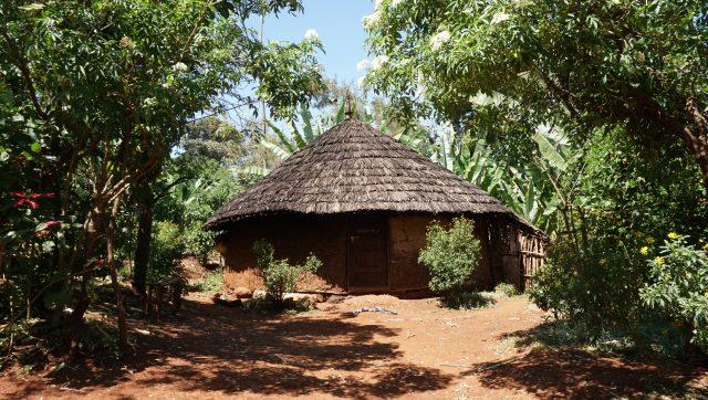 Farm house in Chelbesa, Gedeb, Ethiopia.