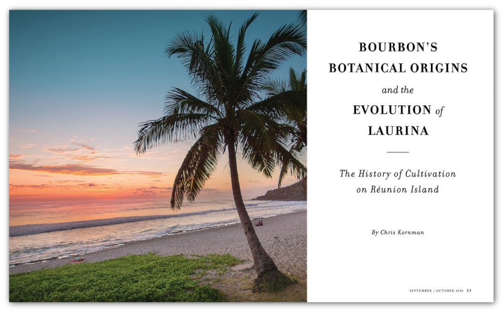 Bourbon's Botanical Origins and the Evolution of Laurina