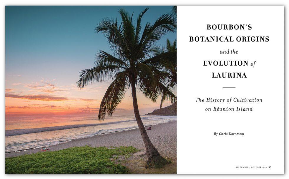 Bourbon's Botanical Origins and the Evolution of Laurina