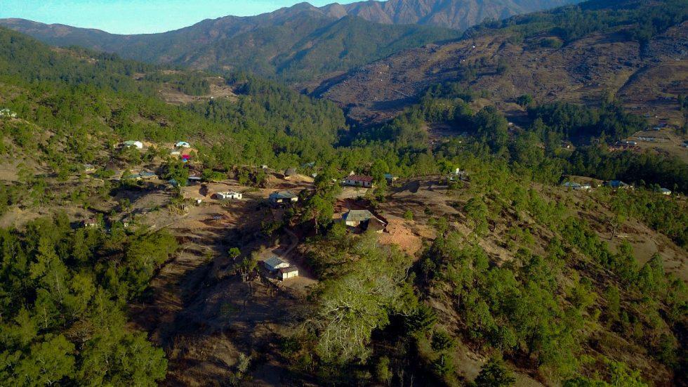 Producer Update: Cafe Brisa Serena Timor-Leste