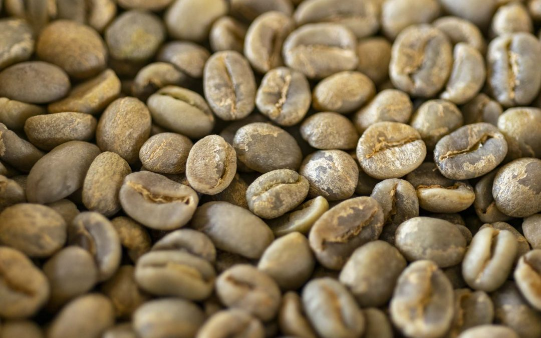 Royal Coffee's Green Coffee Menu: Best Sellers and Common Coffee Types
